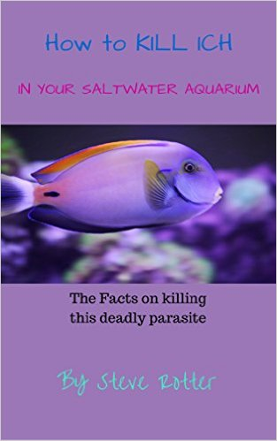 how to kill in in a saltwater reef tank forever