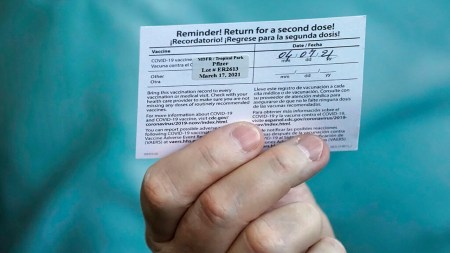 Fake covid vaccination cards for sale