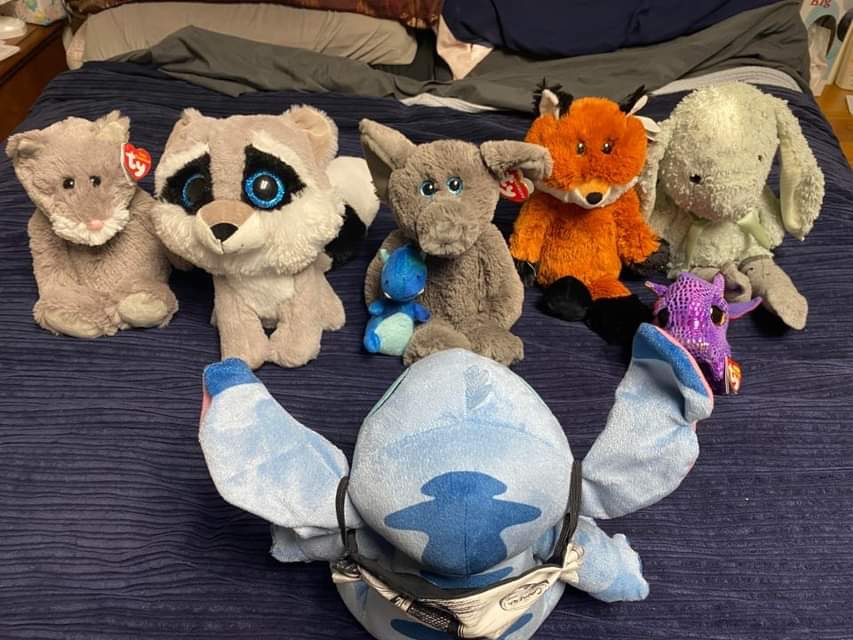 Meet All of the Lovies - These lovies, stuffed animals are the sales people for SteveZ MaskZ. When we go out and about and shopping for fabric and supplies they stay in the car with a business card and promote SteveZ MaskZ.