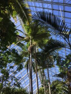 botanic5
