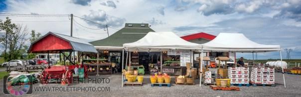 Les Jardins Provost – Central – Kiosque- Ferme – Animaux – Autocueillette 1381, chemin du Général-Vanier Boucherville, QC J4B 5E4 (450) 655-3657