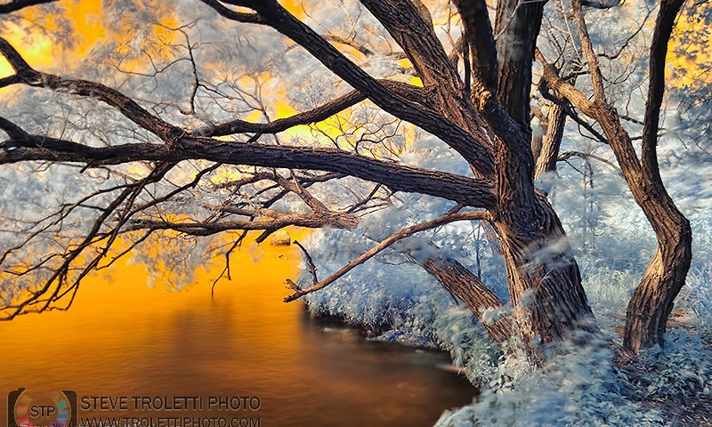 INFRARED River Bank