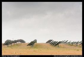 Steve_Van_Hoyweghen-Extremadura-09-2012-04-03-_MG_2873
