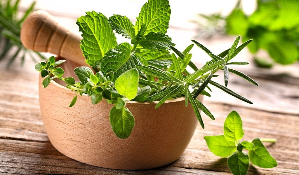Is stevia natural or artificial sweetener?