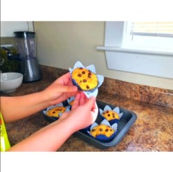 Keto Chocolate Chips Cupcake Recipe