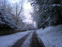 Snow 019