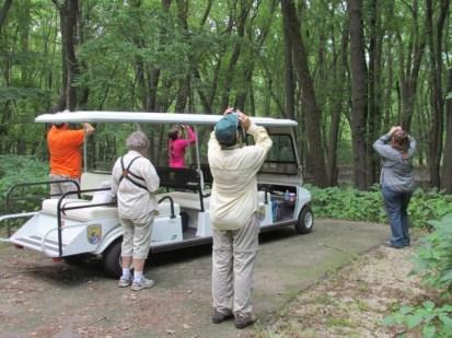 Birding along the Plum River
