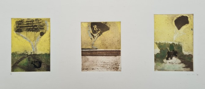Untitled (#3, Degree Show '94), Photoetching, AP, NFS