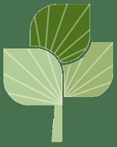 Stewardship Capital leaf
