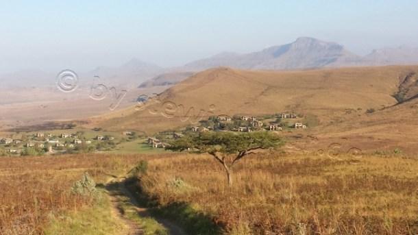stewiontour_Südafrika2015 (154)