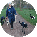 Carolyn - St Giles Animal Rescue Fundraising