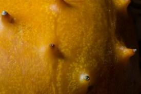 kiwano-melon-4676