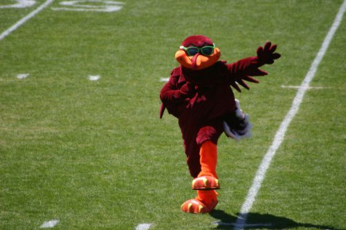 HokieBird Virginia Tech Hokies mascot