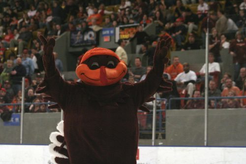 Virginia Tech Hokies HokieBird