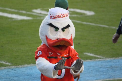 Sebastian the Ibis mascot of Miami Hurricanes