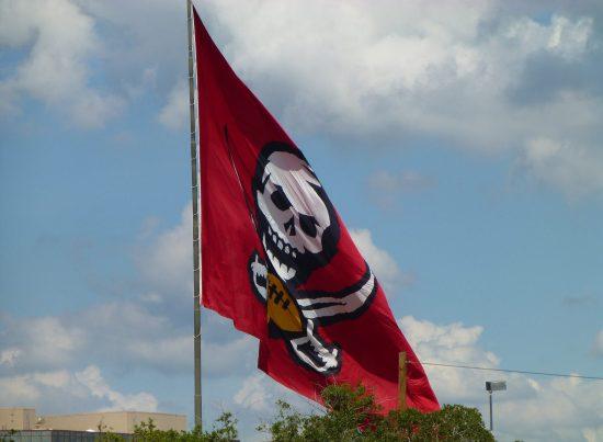 Tampa Bay Buccaneers Bucs flag