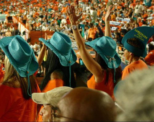 fans cheering at a Miami Dolphins game