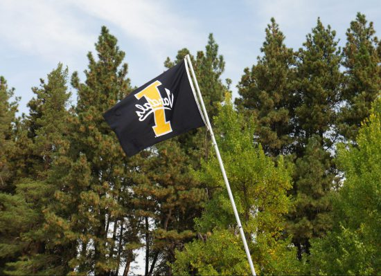 Idaho Vandals flag