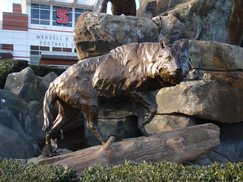 Wolf Statue NC State Wolfpack