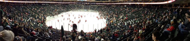 crowd at Minnesota Wild game