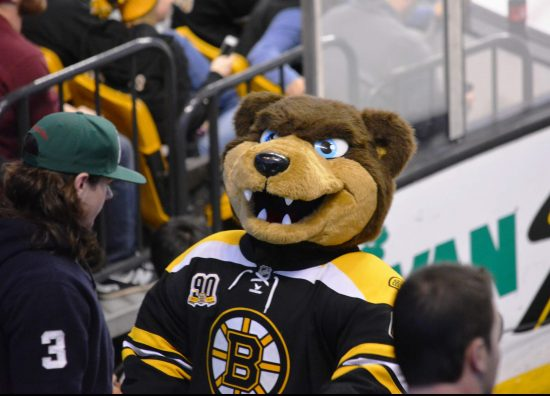 Boston Bruins mascot Blades the Bruin