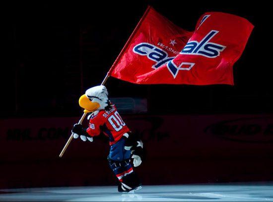 Washington Capitals mascot flag Slapshot