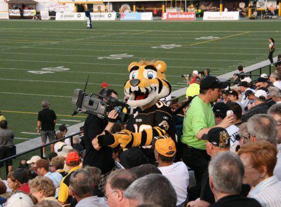 Hamilton Tiger Cats Mascot