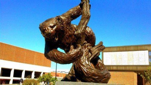Cincinnati bearcat statue