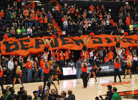 OSU Beavers Basketball fans