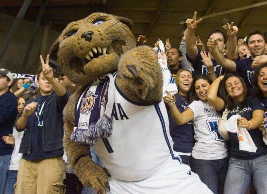 Villanova Wildcats basketball mascot Will D Cat