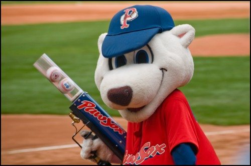 Pawtucket Red Sox Mascot Paws