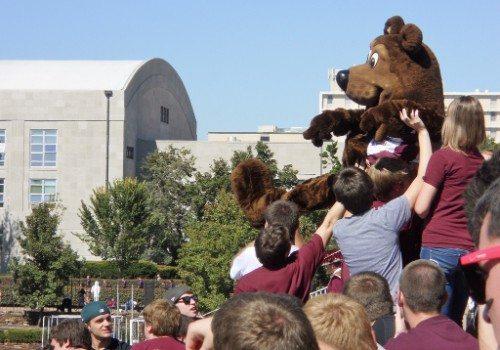 Missouri State Bears Mascot Boomer
