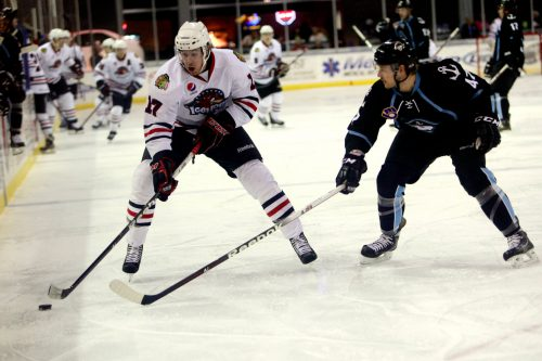 Milwaukee Admirals Rockford IceHogs