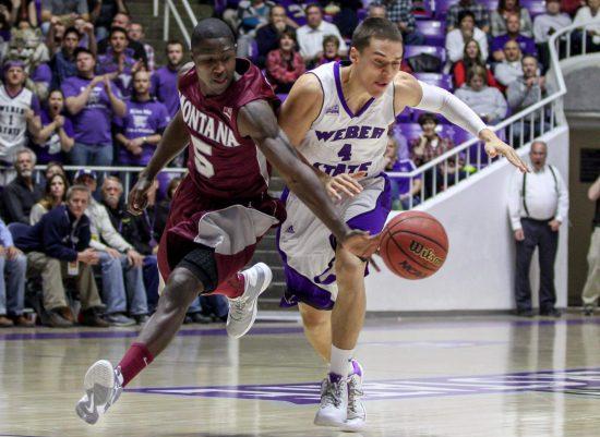 Weber State Wildcats Basketball Montana Grizzlies