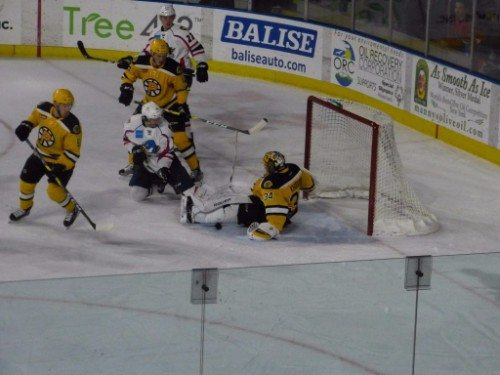 Providence Bruins vs Springfield Thunderbirds