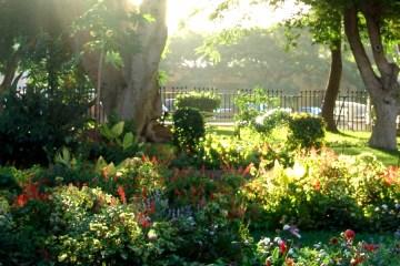 Castle Gardens, St Helena Island