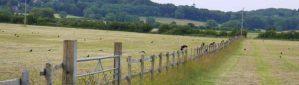 cde51 cropped wootton fields 1