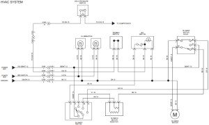 2005 Freightliner Ac Wiring Diagram | Fuse Box And Wiring