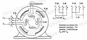 Single Phase Reversible Motor Wiring Diagram   Wiring Diagram And Schematics