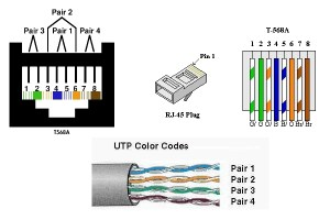 Cat5 Wire Diagram   Fuse Box And Wiring Diagram