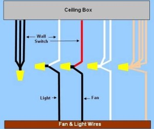 Harbor Breeze Ceiling Fan Wiring Diagram | Fuse Box And Wiring Diagram