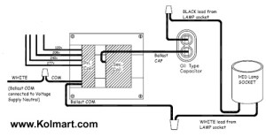 480V To 120V Transformer Wiring Diagram | Fuse Box And