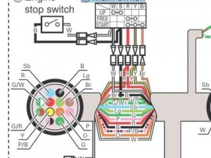 Evinrude Ignition Switch Wiring Diagram | Fuse Box And