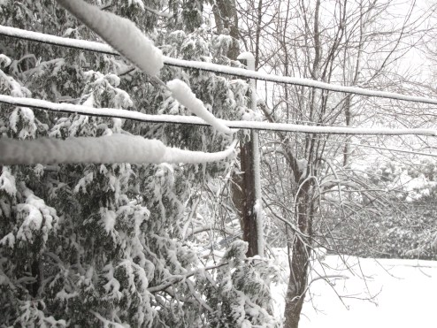 This is our clothesline...with about 5cm of snow balanced on top!