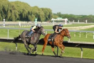 Mitchell (nearside) on Handful on Stripes and Florent on The Zip Zip Man