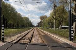 SKL_Artis en Amsterdam-123