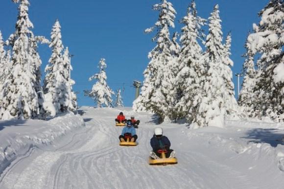 Vinterbilde fra Budor i Løten. Fire barn på kjelke aker akebakken.
