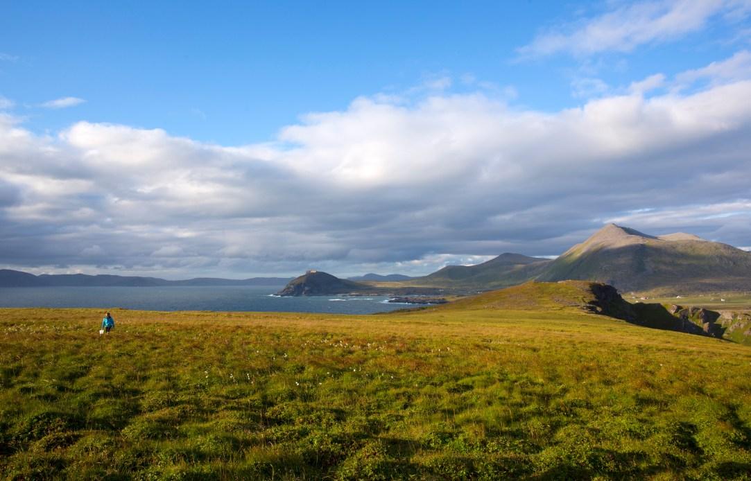 Natur panorama Sørøya