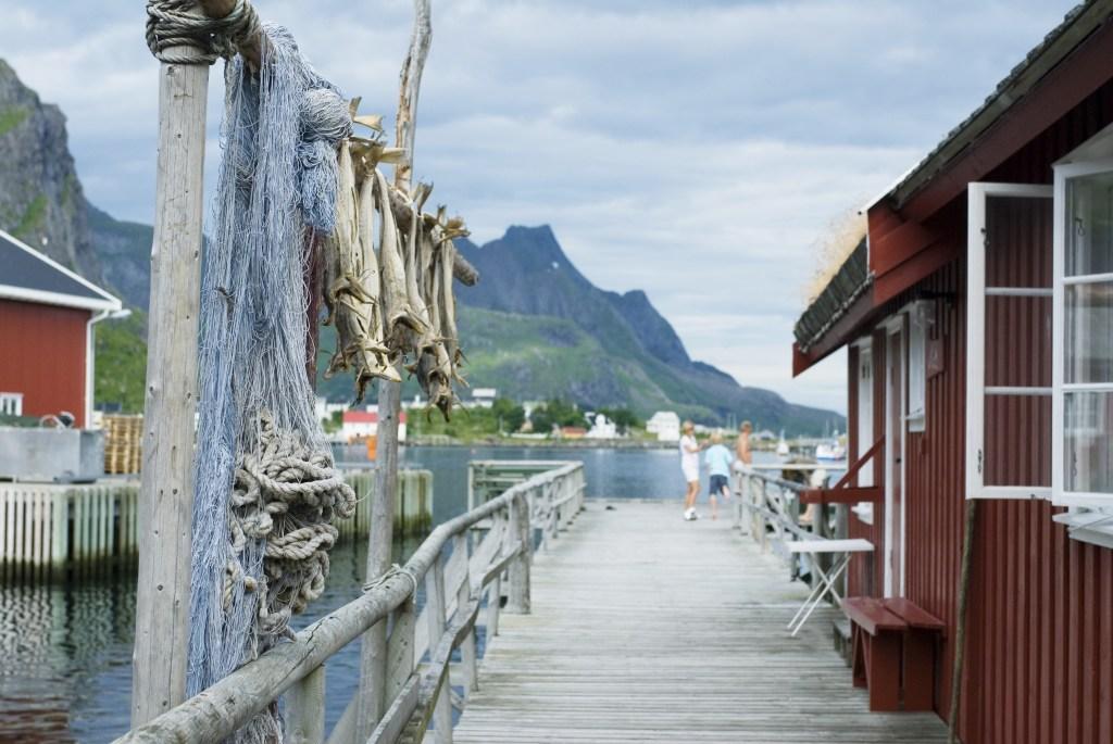 Fiskelandsbyen Reine med rorbu og tørrfisk