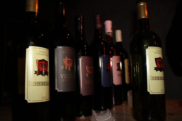 vina panajotovic